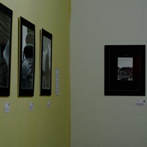 La muestra está compuesta por 16 fotografías